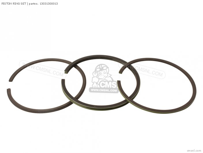 (13031300024) PISTON RING SET