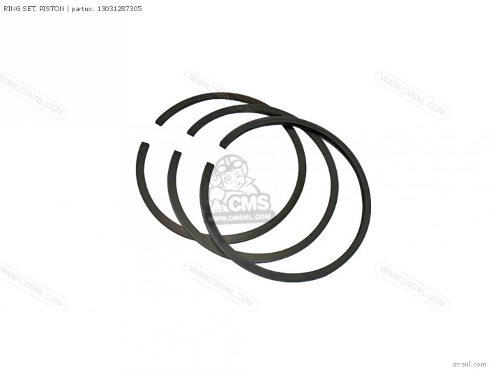 (13031391004) RING SET, PISTON