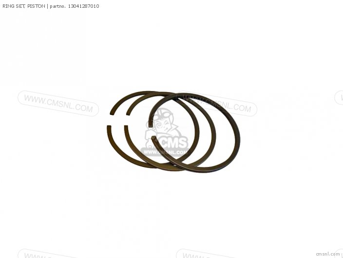 (13041287305) RING SET, PISTON