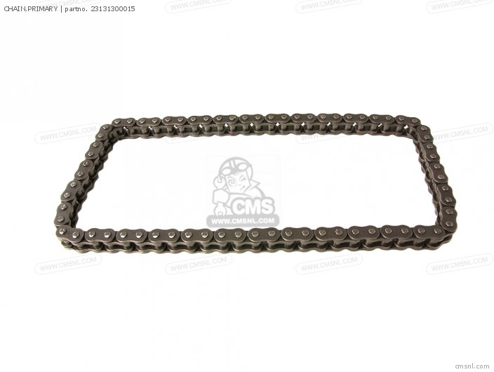 23131-300-315 CHAIN PRIMARY