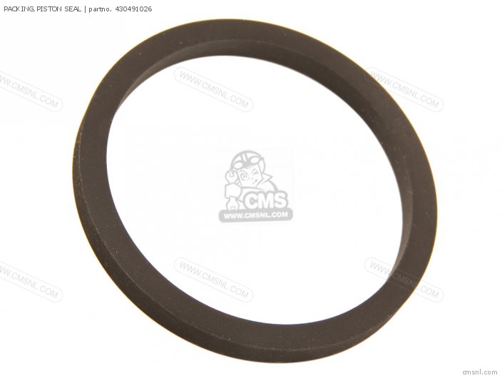 430491095 PACKING PISTON SEAL