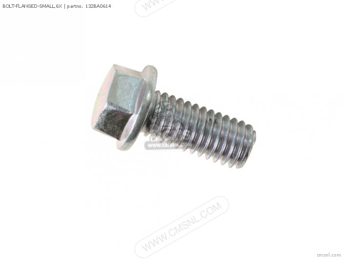 Bolt-flanged-small,6x photo
