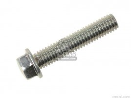 BOLT-FLANGED-SMALL,6X
