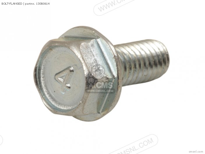 Bolt-flanged photo