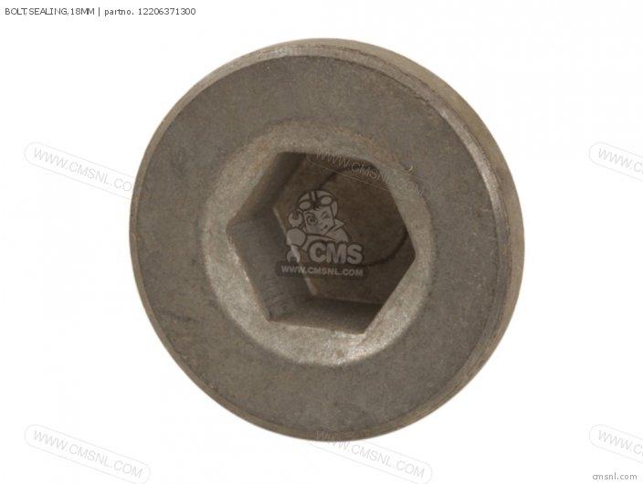 Bolt, Sealing, 18mm photo