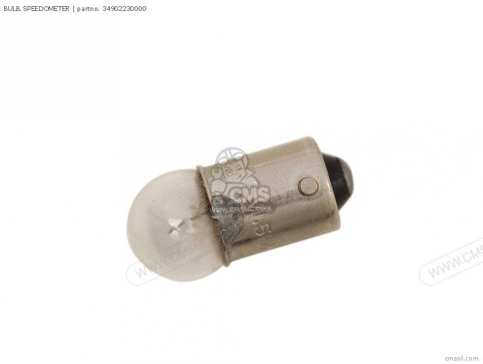 Bulb, Speedometer photo