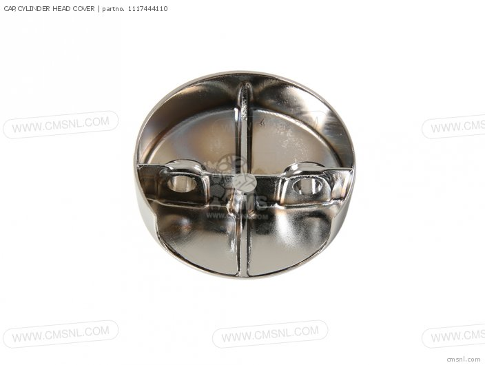 CAP CYLINDER HEAD COVER