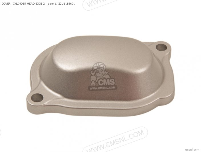 COVER, CYLINDER HEAD SIDE 2