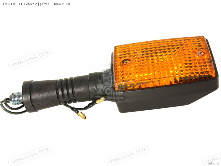 FLASHER LIGHT ASSY 2