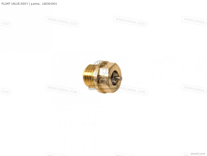 FLOAT VALVE ASSY