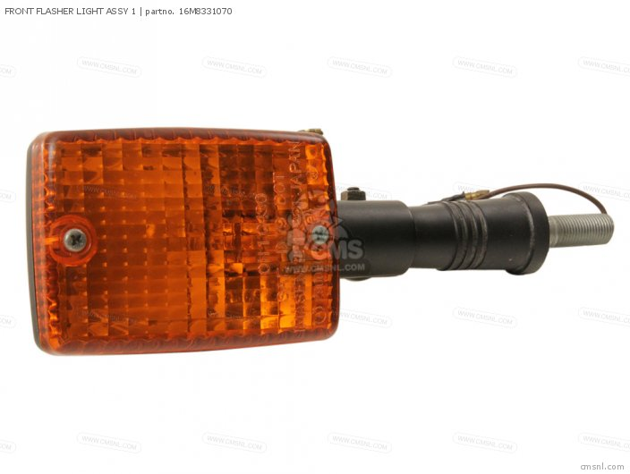 FRONT FLASHER LIGHT ASSY 1