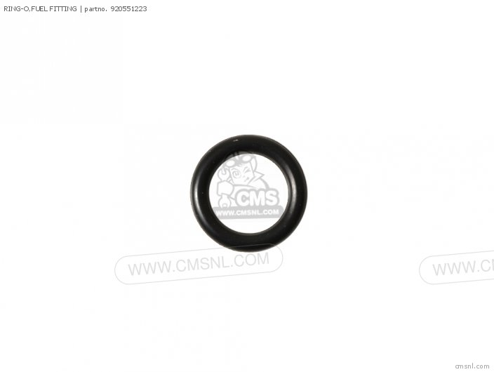 FUEL FITTING O-RING