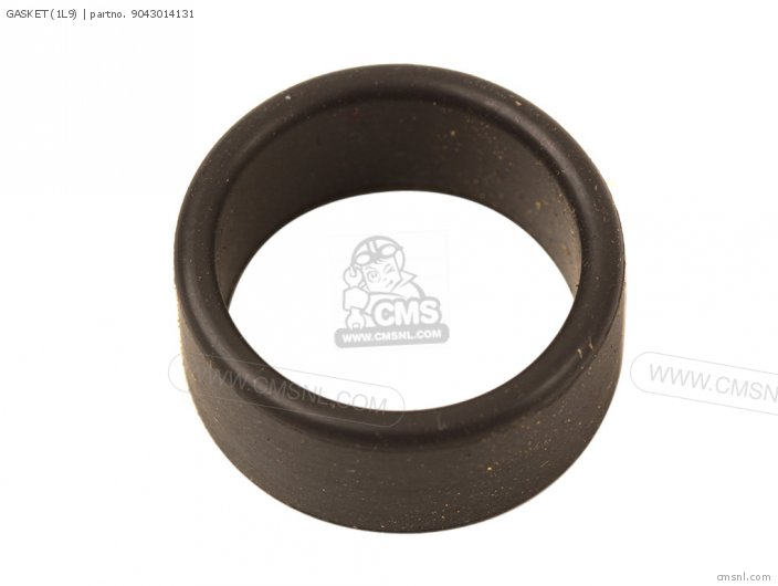 Gasket (1l9) photo