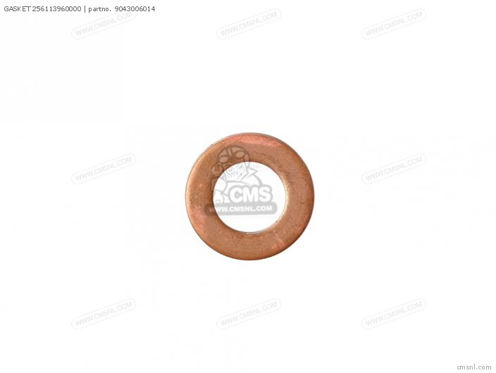 Gasket 256113960000 photo
