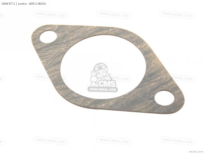 Gasket 2 photo