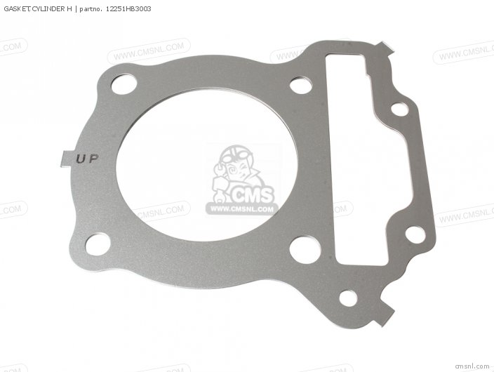 Trx200d Fourtrax 1997 European Direct Sales Gasket cylinder H