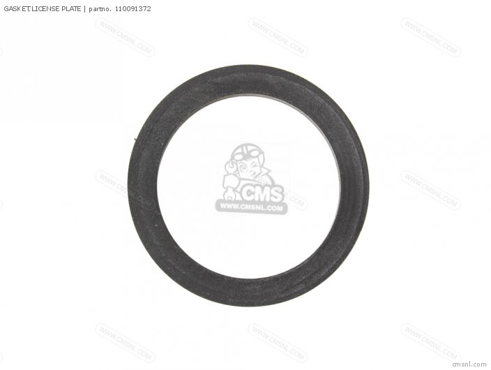 1989 A3  Kl650 Gasket license Plate