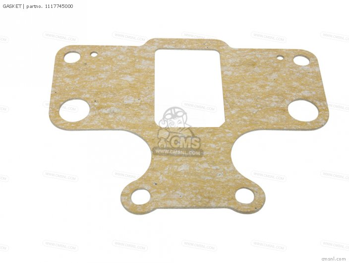 Gasket (mca) photo