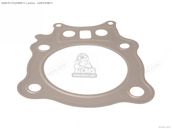 Gasket, Cylinder H photo