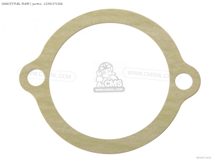 Gasket, Fuel Pump (nas) photo