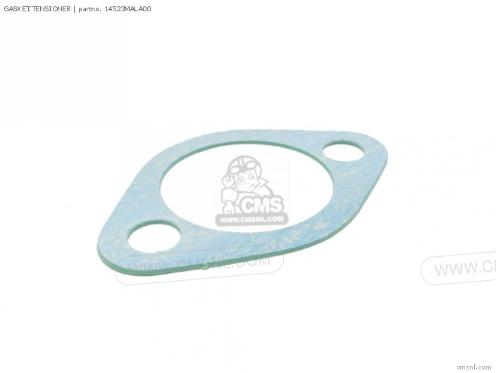 Gasket, Tensioner (nas) photo