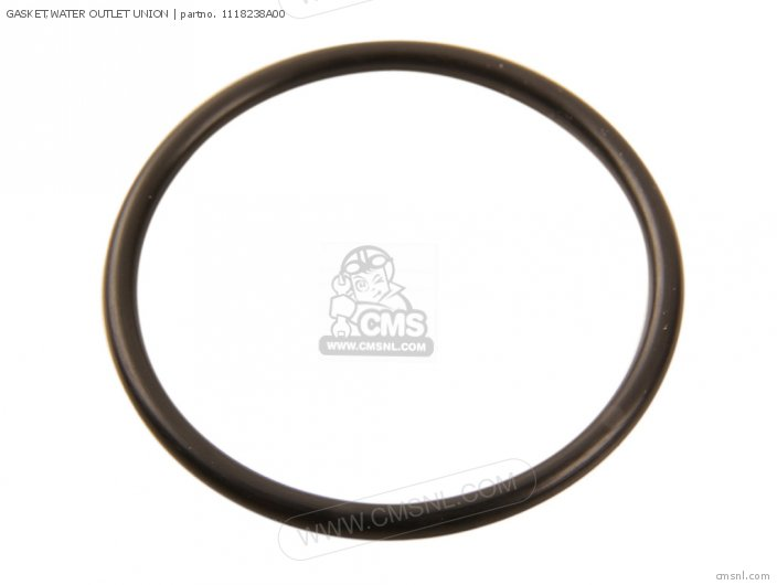 Gasket, Water Outlet Union (nas) photo