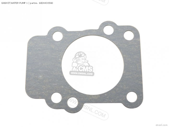 Gasket, Water Pump 1 (nas) photo