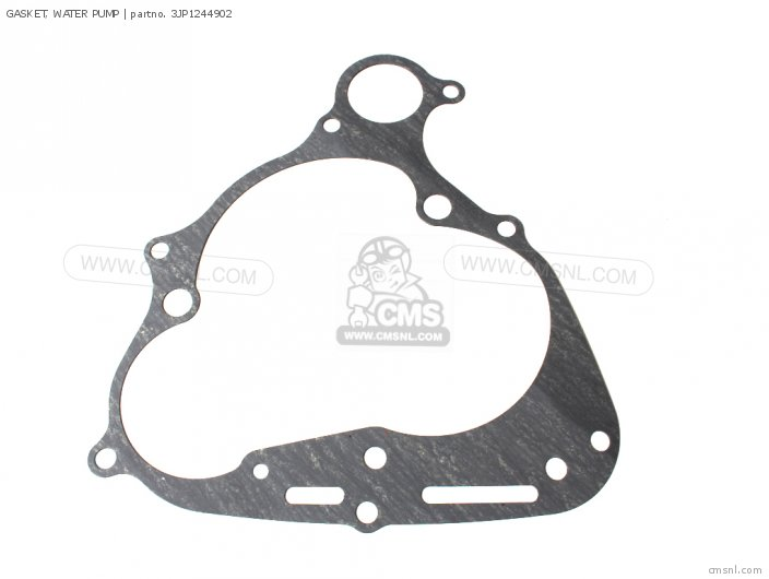GASKET  WATER PUMP