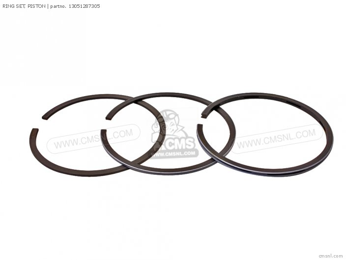 (13051391004) RING SET, PISTON