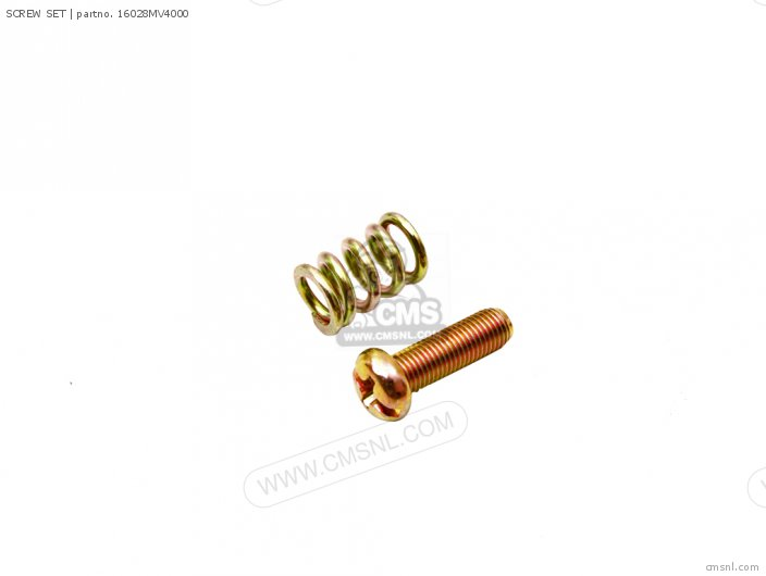 (16028MZ2E00) SCREW SET