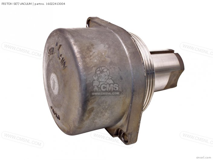 (16044425771) PISTON SET,VACUUM