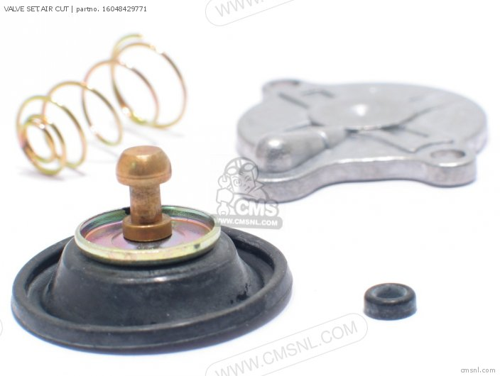(16048443901) VALVE SET,AIR CUT