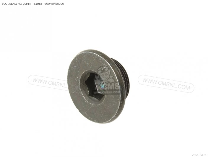 BOLT,SEALING,20MM