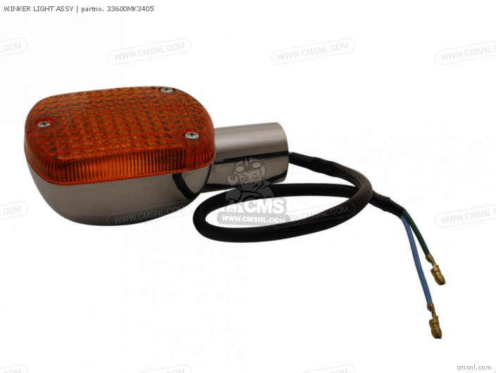 WINKER LIGHT ASSY