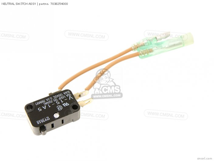 Neutral Switch Assy photo