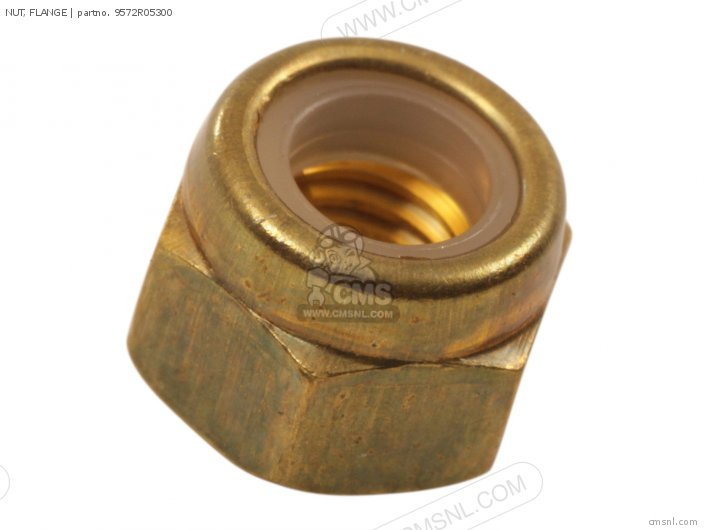 Nut, Flange photo