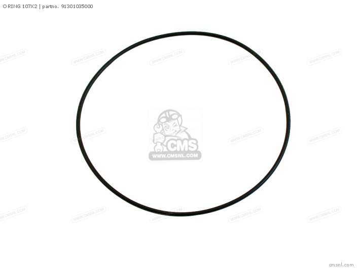 O Ring 107x2 photo