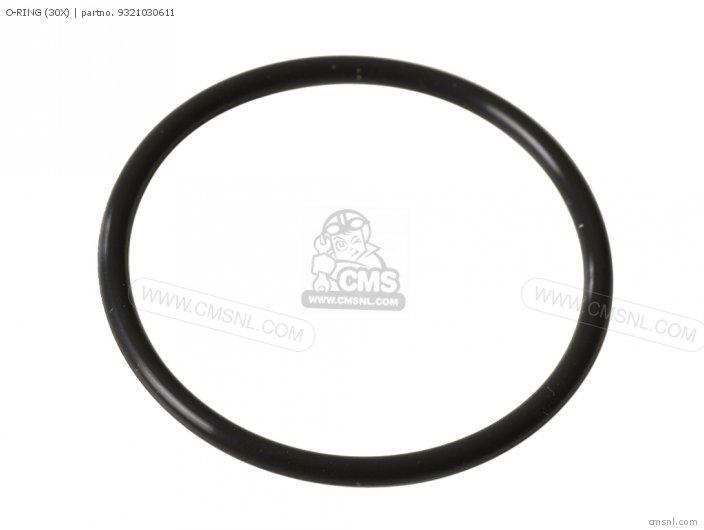 O-ring (30x) photo