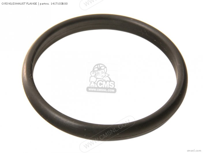 O Ring, Exhaust Flange photo