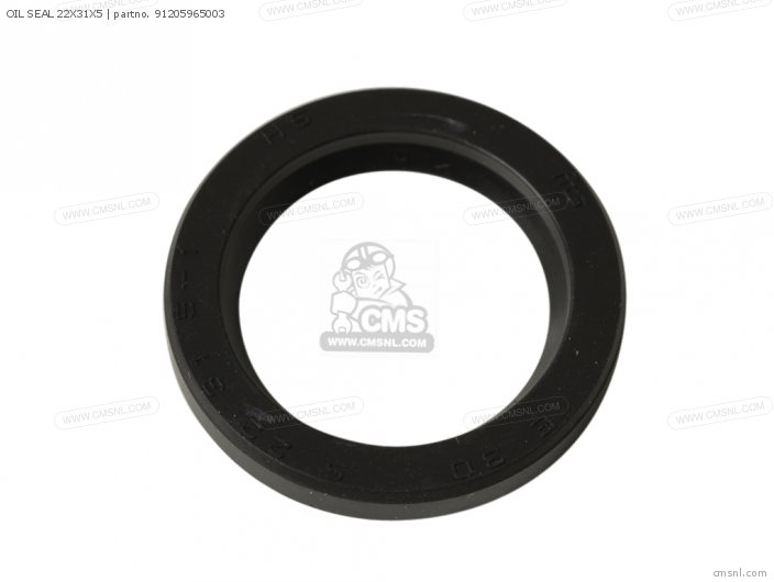 Oil Seal 22x31x5 photo