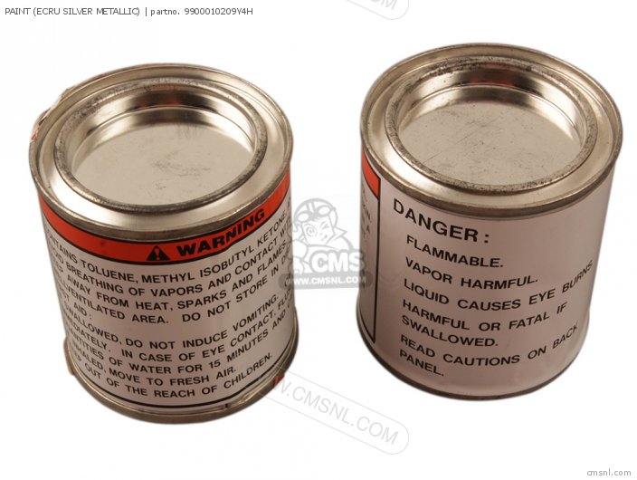 Paint (ecru Silver Metallic) photo
