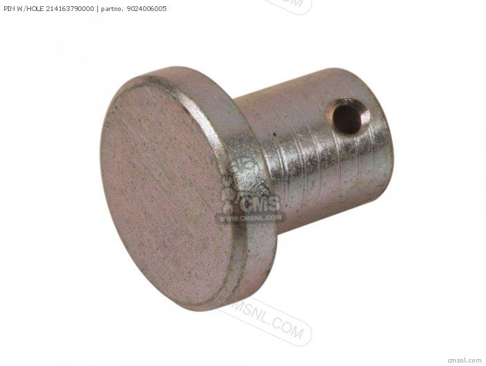 Dt1mx 1971 Usa Pin W hole 214163790000
