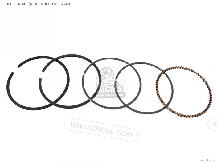 Bw200et 1987 Piston Ring Set std