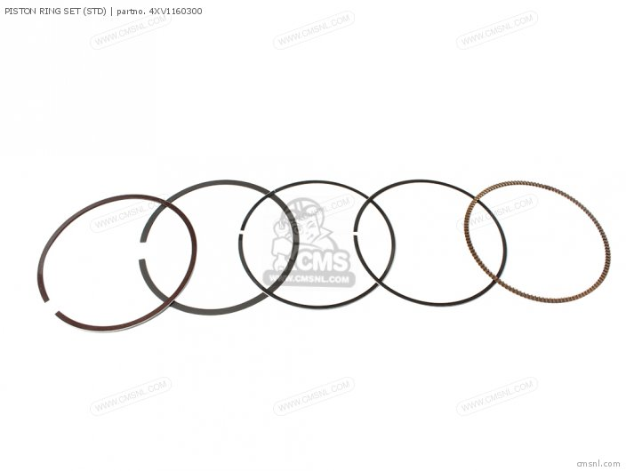 Piston Ring Set (std) photo