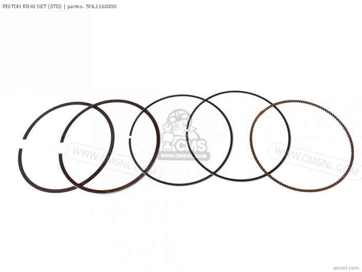 PISTON RING SET STD