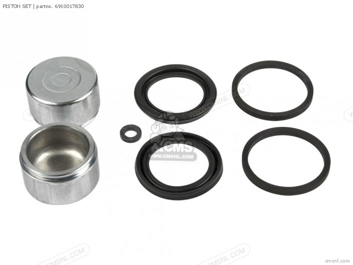 Piston Set photo