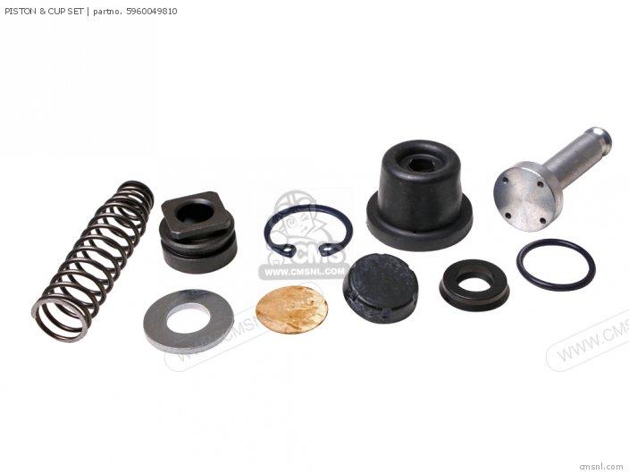 Piston & Cup Set photo