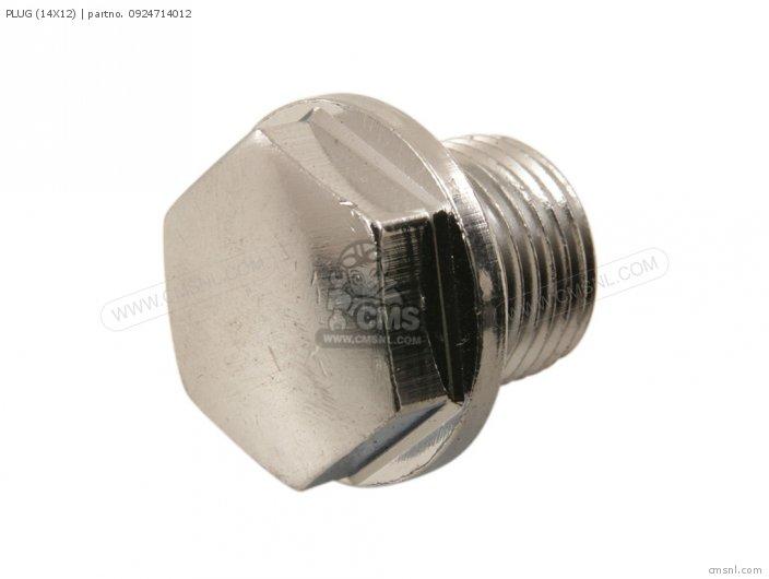 Plug (14x12) photo