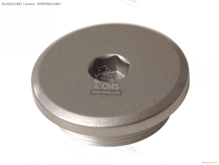 Plug(silver) photo