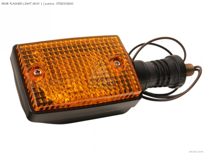 REAR FLASHER LIGHT ASSY 1